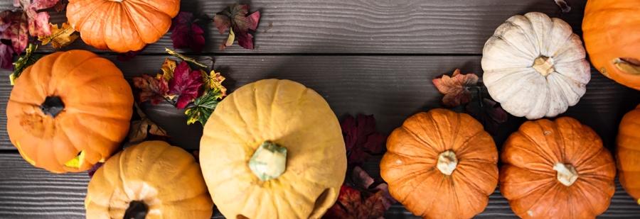 Rezepte aus Kürbis im Herbst